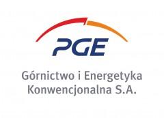 logo PGE GiEK SA pion